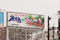 th_yasai.jpg